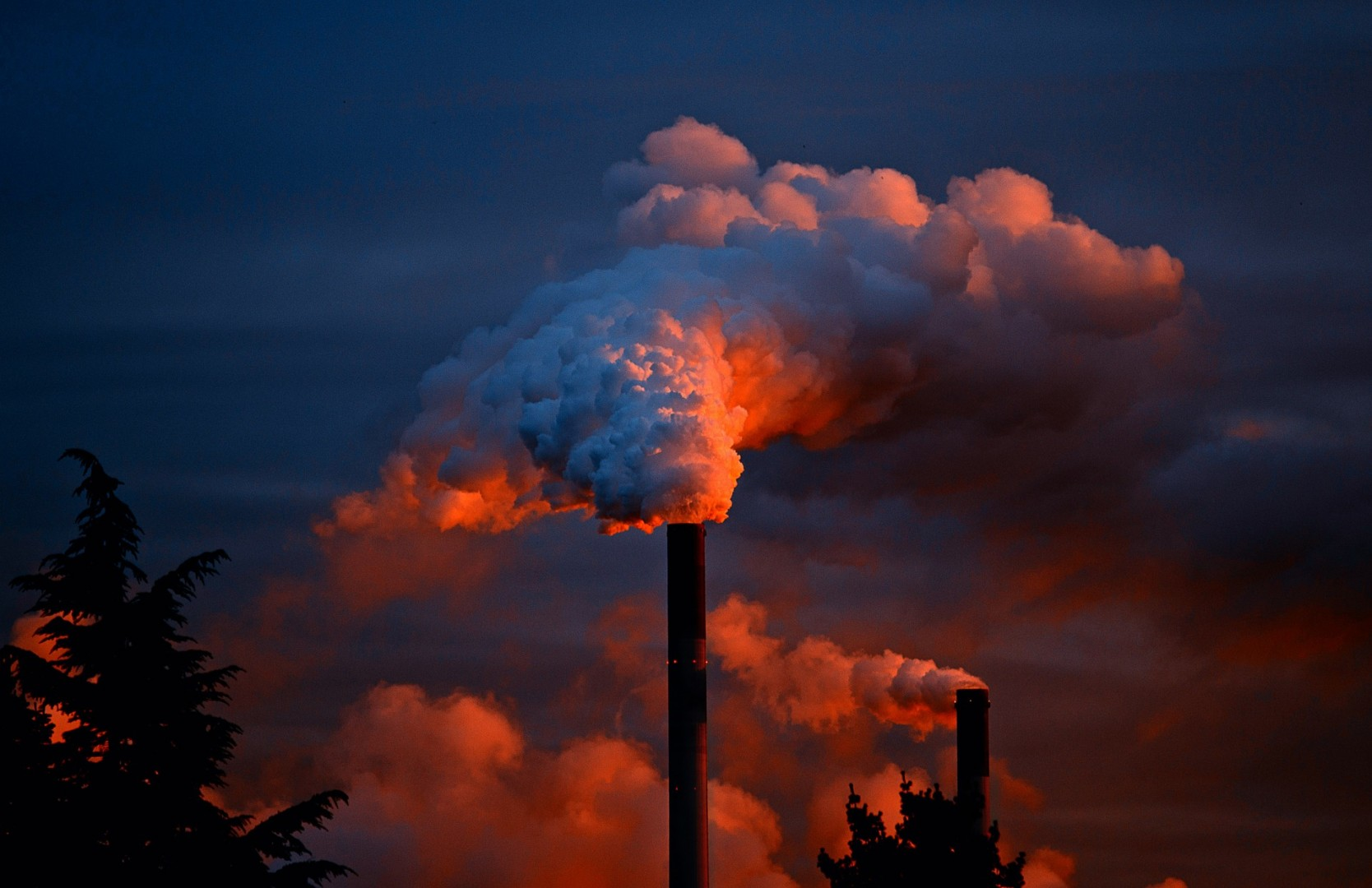 Los Contaminantes Ambientales Intensifican Las Crisis Asmáticas
