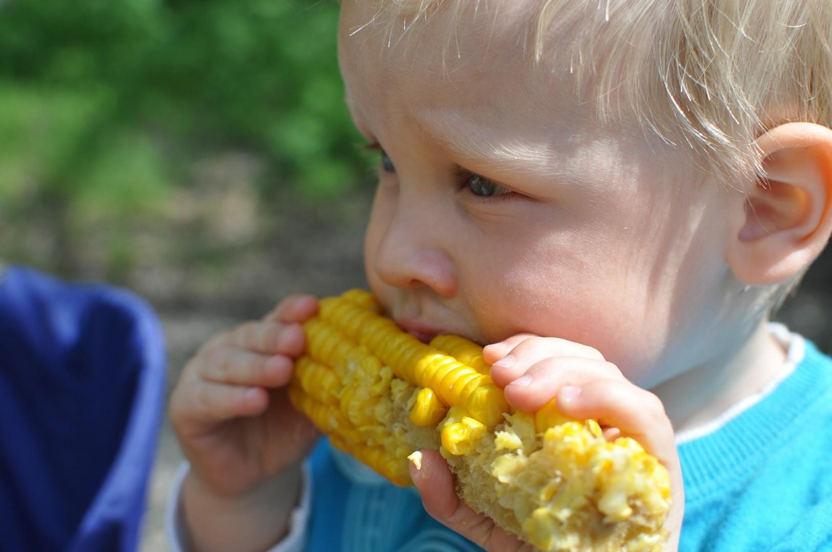 Child 559415 1920